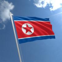 1898944598_w640_h640_flag-severnoj-korei
